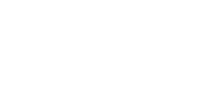 TRUE TEAM CONSULTING